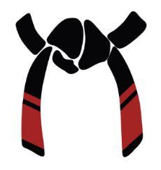 sixth-black-belt